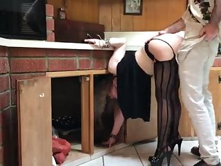 COUGAR stuck in the kitchenette drilled by neighbor (pin)